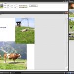 Creare Documento PDF